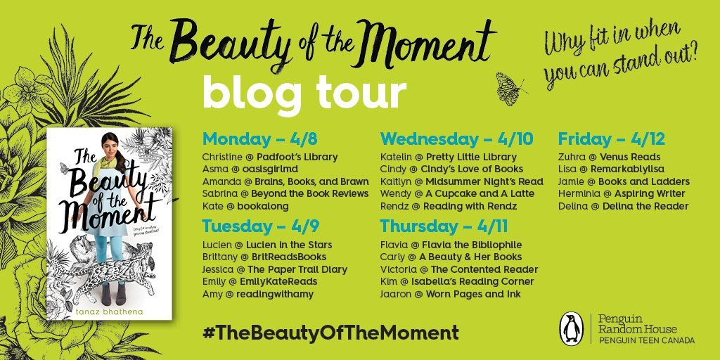 beauty of the moment blog tour graphic